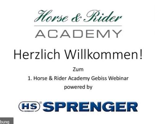 Das 1. Gebiss Webinar der Horse & Rider Academy geht online - Das 1. Gebiss Webinar der Horse & Rider Academy geht online