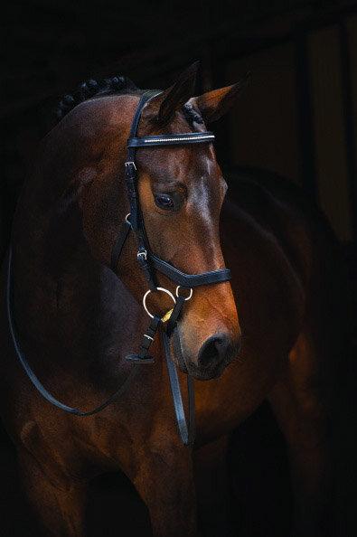 Horseware Rambo Micklem Diamante Competition Trense