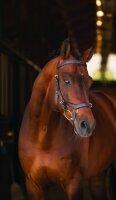Leihgebühr für Horseware Micklem Multibridle