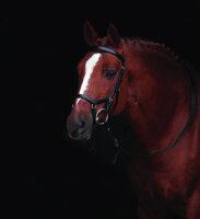 Leihgebühr für Horseware Micklem Competition...