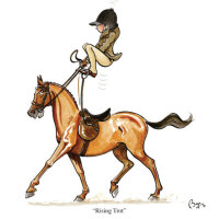 Bryn Parry Karte - Rising Trot