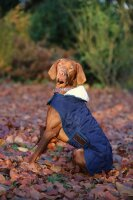 Kentucky Dogwear Hundemantel Marine