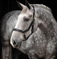 Horseware Halfter Rambo Micklem Headcollar Black