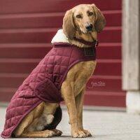 Kentucky Dogwear Hundemäntel bordeaux