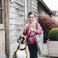 Kentucky Dogwear Hundebett Travel In Style grey