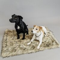 Kentucky Dogwear Dog Bed To Go Blanket Fuzzy brown