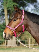 Busse Halfter FLYING PONY II pink