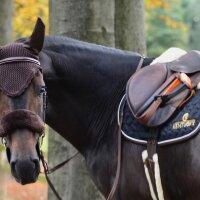 Kentucky Horsewear Fliegenhaube braun