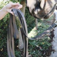 Kentucky Horsewear Hengstleine schwarz