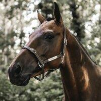 Kentucky Horsewear Lederhalfter flexible braun